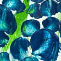 Dallas Texas Beauty bluebonnet flower by Nandita Albright
